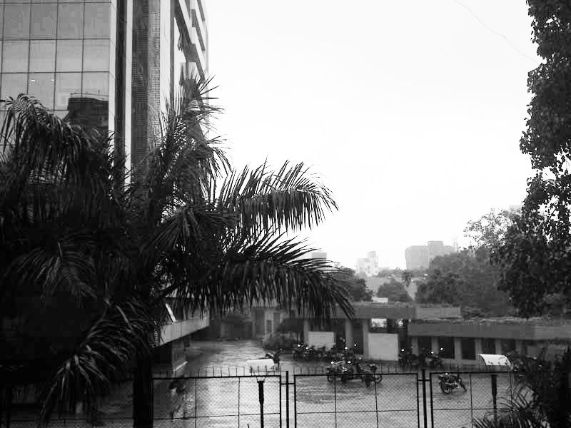 Rain Photography taken by Talented Photographer
