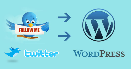 How to Display Twitter Counter in WordPress blog