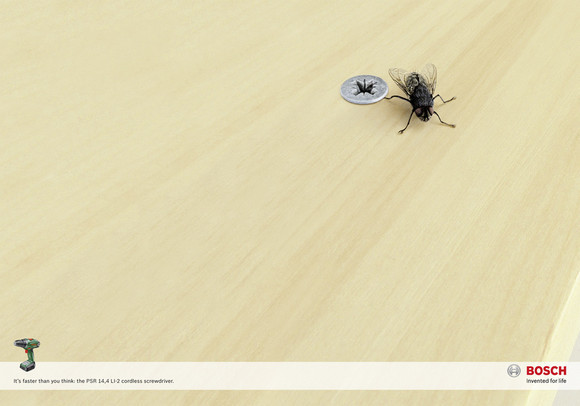 Bosch Electric Screwdriver: The fly