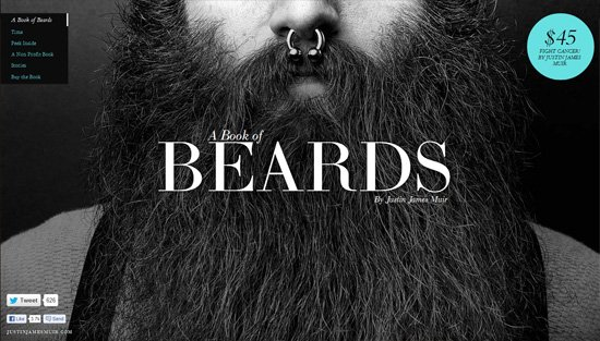 Photo background example: A Book of Beards